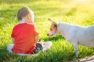Boy In Grass Playing With His Dog