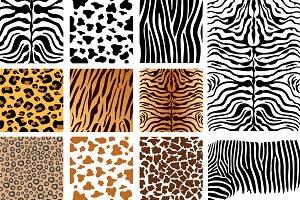 Vector Animal Skins