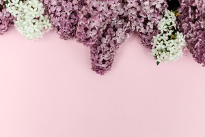 Beautiful floral border with lilacs. With copy-space.