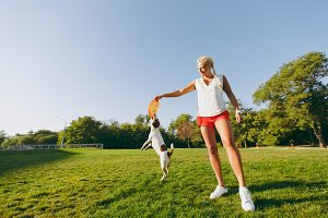Woman throwing orange flying disk to small funny dog, which catching it on green grass. Little Jack Russel Terrier pet playing outdoors in park. Dog and owner on open air. Animal in motion background.
