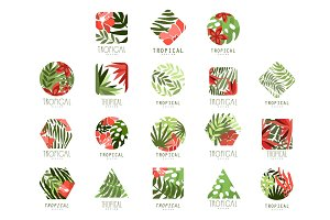 Collection of geometric tropical logo with leaves and flowers