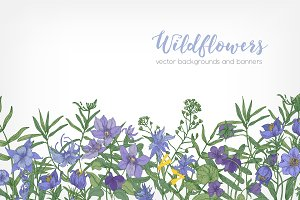 Floral backgrounds, banners