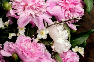 peonies with water drops