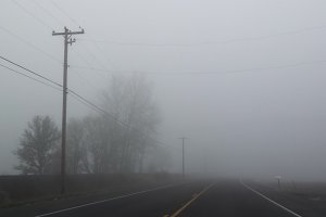 Foggy Days 2
