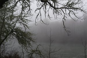 Foggy Days 10