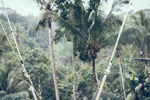 Closeup of swings in the jungle of Bali island, Indonesia.