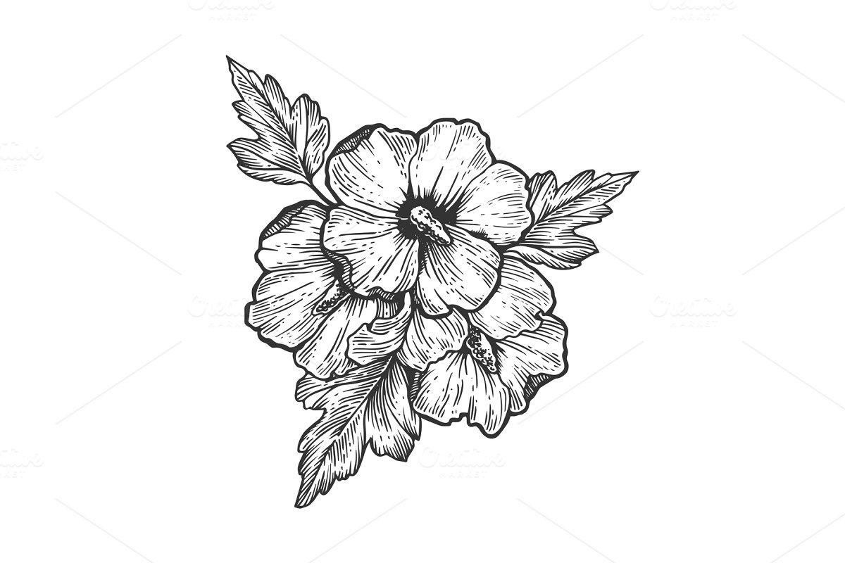 Hibiscus Flower Engraving Vector Illustration Illustrations