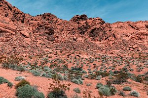 Landscape Of Scenic Textured Desert