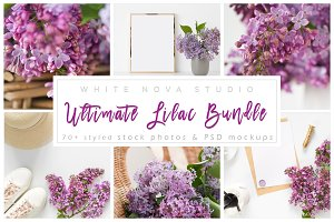 Ultimate Lilac Bundle