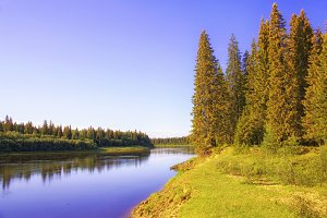 A sunny morning on the banks of a Siberian taiga river