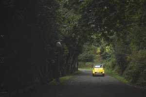 yellow car through forest road