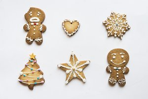 Gingerbread cookie with icing sugar