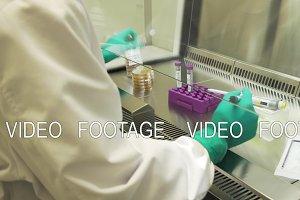 Scientist makes a scientific experiment