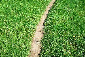 Vertical countryside path landscape background