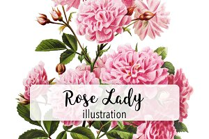 Flowers: Vintage Rose Lady