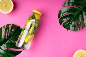 Bottle tropical water and monstera