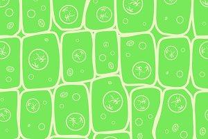 Macro photo of plant cells