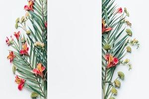 Summer tropical design layout frame