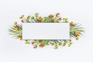 Summer tropical banner frame