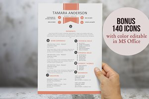 Ribbon 2 in 1 resume for Word