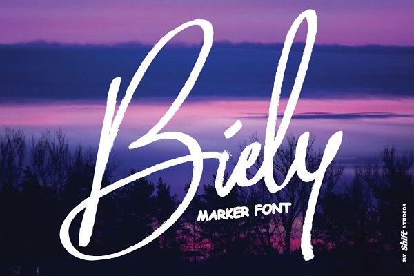 Script Fonts: Shift Studios - Biely Marker Font