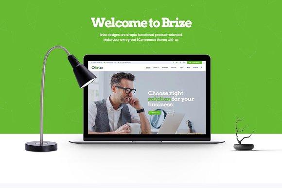 Brize Business WordPress Theme