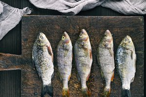 fish crucian and perch