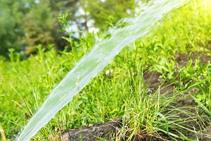 Sprinkler watering green grass