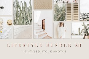 Lifestyle Bundle 12