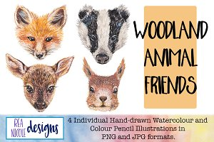 Woodland Animal Friends Clip Art
