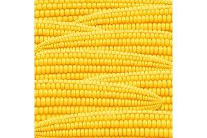 Corn cob. Organic food pattern.