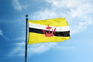 Brunei Darussalam flag on the mast