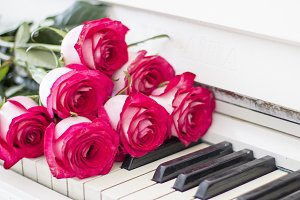 Luxury red roses on a piano. Bouquet