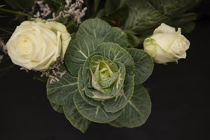 Roses with Cabbage Plant