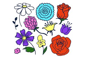 Pretty Color Flowers Aggregate Vector Illustration