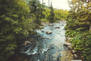 Valley landscape. Flowing river. The Tatras.