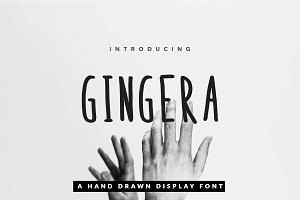 Gingera Font Suite for Book & Text