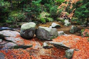 Stream in Autumn Mountains