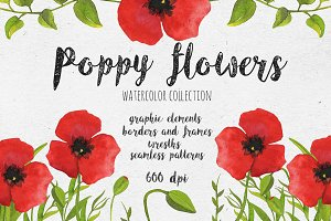 Poppy flowers. Watercolor collection