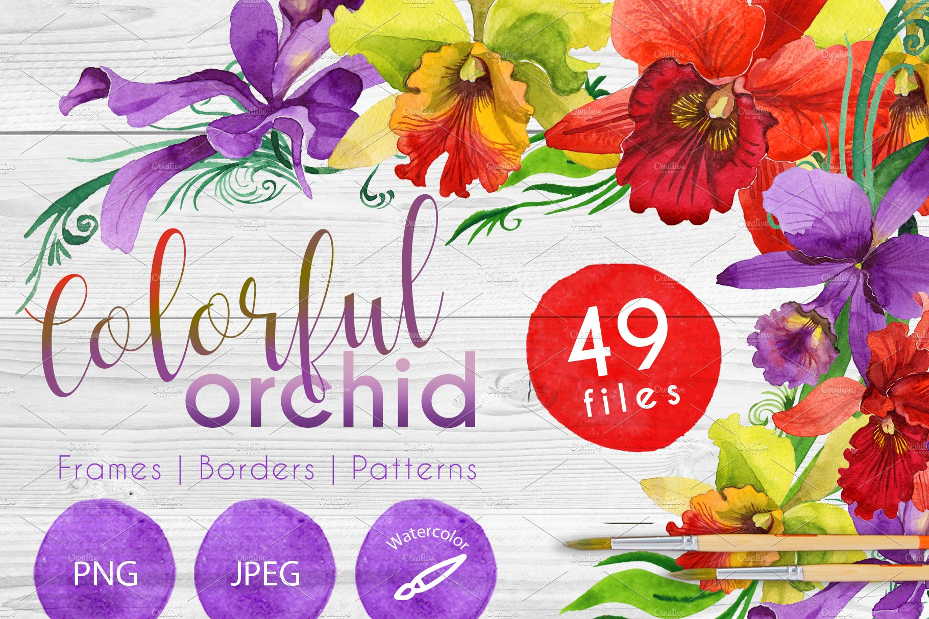 Colorful orchid PNG watercolor set ~ Illustrations ~ Creative Market