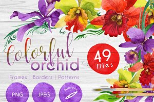 Colorful orchid PNG watercolor set