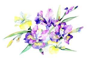 Purple bouquet flowers PNG set
