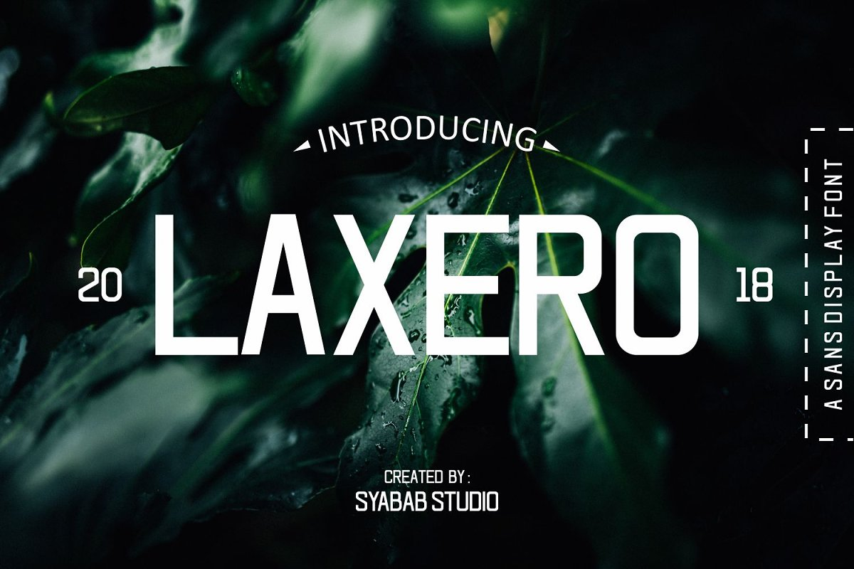Laxero Font in Display Fonts - product preview 8