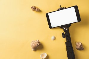 smartphone and selfie stick