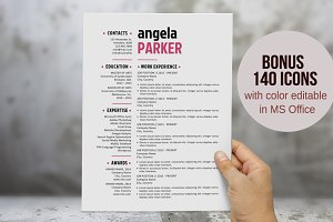 Large name 3 in 1 resume template