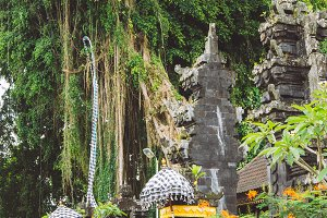 Bali temple entrance with guardian statue and Huge ancient Banyan tree in background. Indonesia