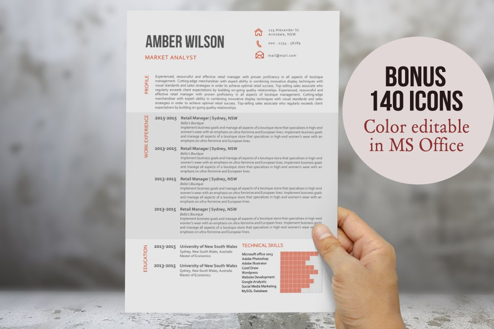 modern chart resume template resume templates creative market - Microsoft Resume Templates 2013