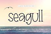 Seagull - A Handwritten Font