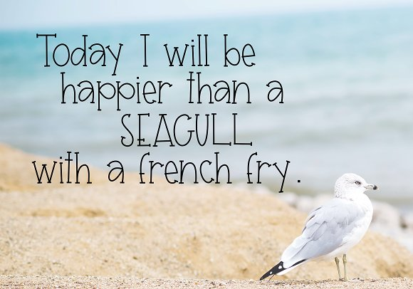 Seagull - A Handwritten Font in Display Fonts - product preview 2