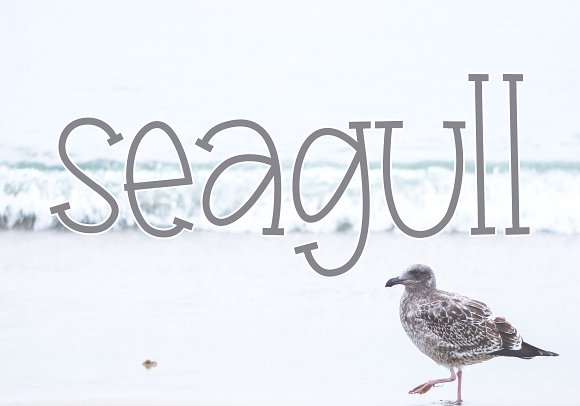 Seagull - A Handwritten Font in Display Fonts - product preview 6